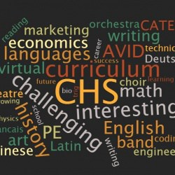 Curriculum Fair wordcloud