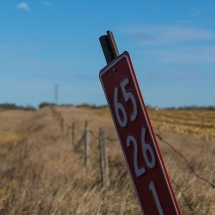 Crooked sign post in a field