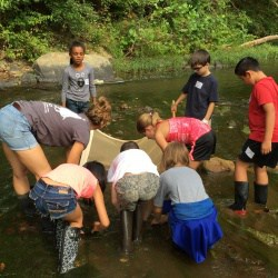 Students working in a stream