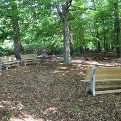 the outdoor classroom at Walker Elementary school