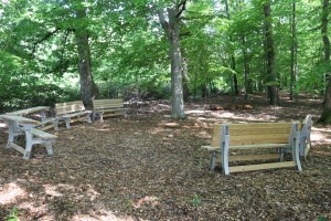 Walker-outdoor-classroom-sm