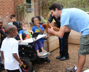 Students meeting a chicken in the Johnson garden