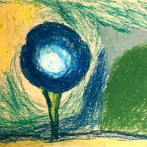 flower drawing by Burnley Moran 4th grader Emma