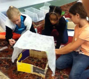 Students building a structure to protect lettuce from frost