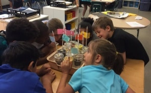 Greenbrier students collect data, confer, and admire their STEM projects!