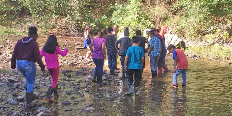 Students wade through creek at Camp Albemarle.
