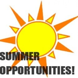 "Illustration of sun with words ""summer opportunities"""