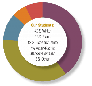 Cville City Schools 17-18 Demographics: 42% White, 33% Black, 12% Hispanic/Latino, 7% Asian/Pacific Islander/Hawaiian, and 6% Other