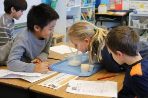 1st-graders learning what dissolves in water.