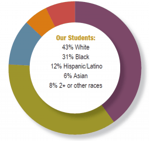 demographics shown in circle graph